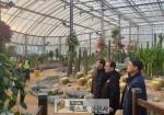 곽기권 창원시 환경녹지국장, 현안사업장 점검,   ,   창원수목원, 팔용양묘장 등 녹지시…